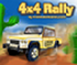 4 x 4 Reli Trka - Rally Race